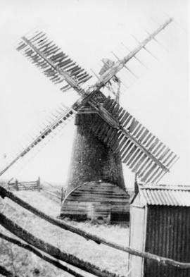 Tower mill, Fritton Marshes