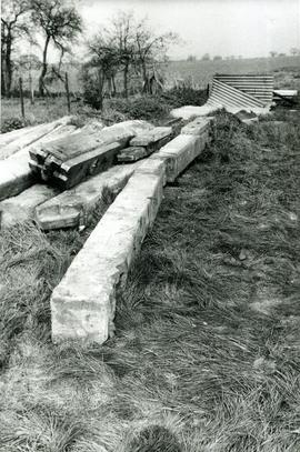 Timber remains, Moreton