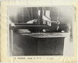 Hopper, shoe and tun