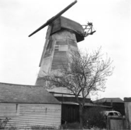 White Mill, Sandwich, with two midlings and no fantail