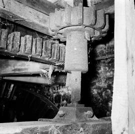 Detail of stone nut and spur wheel, Sadborow Mill, Thornecombe