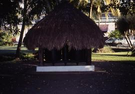"""7 - Unequal size rolls St James' Distillery Thatched roof Martinique"""