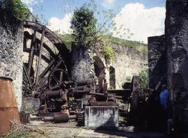 """13 - Martinique Mx and Steam General view Habitation Anse Latouche - Butterfly Farrm"""