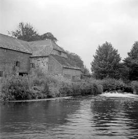 Bindon Mill, Wool, from the river