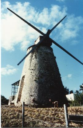 Morgan Lewis Mill, St Andrew, Barbados