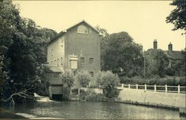 View from downstream, Felstead Mill, Felsted
