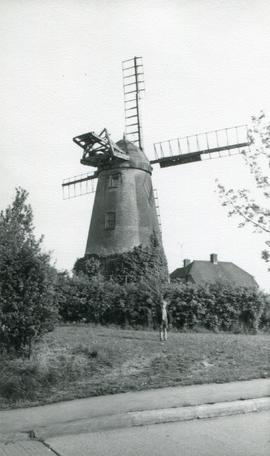 Ovenden's Mill, Polegate, with boy
