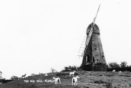 Smock mill, Pluckley, with broken sails