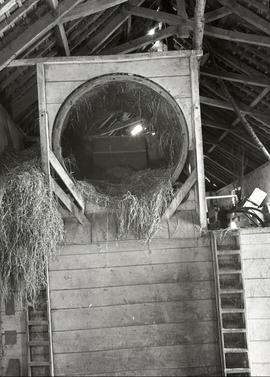 Threshing Machine, Mamhead Mill