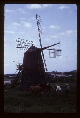 """Smock"" type windmill in working order."