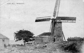 Coru Mill, Barbados, and children, Barbados