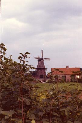 Preserved smock mill at Holland, near Leer, West Germany