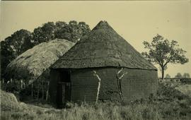 Roundhouse converted into byre, post mill, Boreham