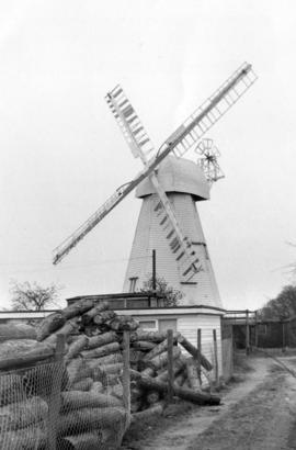 White Mill, Sandwich, with logs