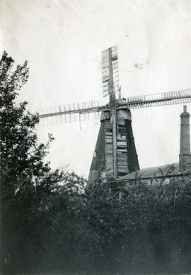 Cobbin's Mill, Downham Road, Ely, in decline