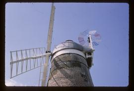Detail of cap, sails and fantail of preserved tower mill