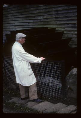 Gilbert Catt standing by wheel, Batemans Mill, Burwash