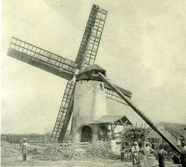 Wind powered sugar cane mill in Barbados