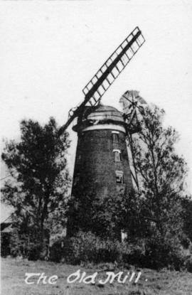 Tower mill, Debenham, surrounded by trees