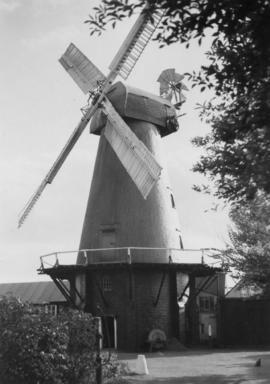Tower mill, Stanford