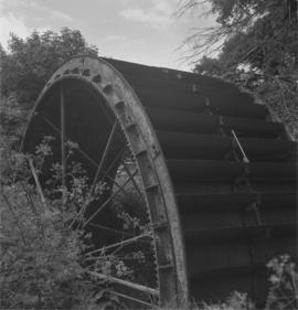 Waterwheel, Forston Farm Wheel, Charminster