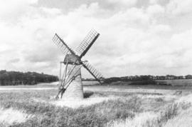 Rear 3/4, Westwood Marshes Mill, Walberswick