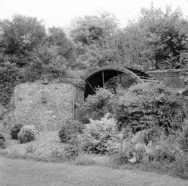 Dubbin's Mill, Sydling St Nicholas, ruined with the wheel and walls visible in the undergrowth
