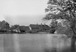 Mill pond, Cann Watermill, Cann, Shaftesbury