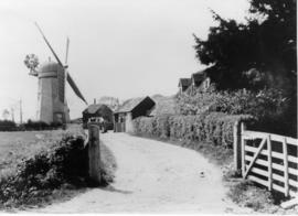 Smock mill, Brettenham, with drive view