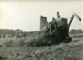 Massey combine harvester at Knowlton