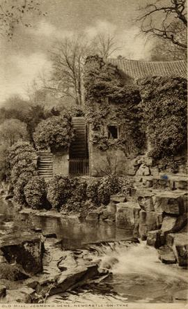 View from across the river, watermill, Jesmond, Newcastle