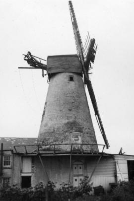 Tower mill, Wingham, derelict