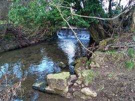 Weir and remains of mill on Bow Brook