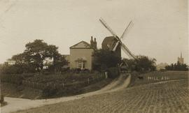 View of mill and surroundings, Mount Ephraim Mill, Ash