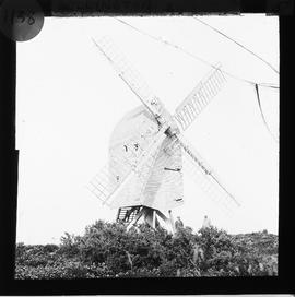 Common Mill, Sullington, derelict, with four sails and body propped at front