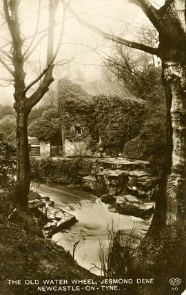 The Old Water Wheel, Jesmond Dene, Newcastle-on-Tyne