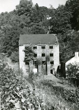 Old Factory, Montgomeryshire