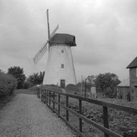 Tower mill, New Bradwell, preserved, viewed from lane
