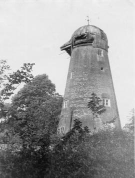 Tower mill, Edenbridge, with decaying roof