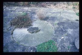 Millstone embedded in paving