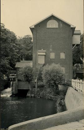 View from road, Felsted Mill, Felsted