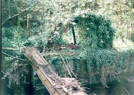 Remnants of Waterwheel
