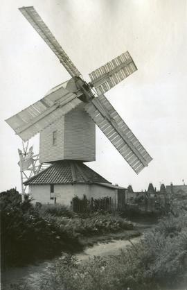 View from road, Thorpeness Mill, Aldringham cum Thorpe