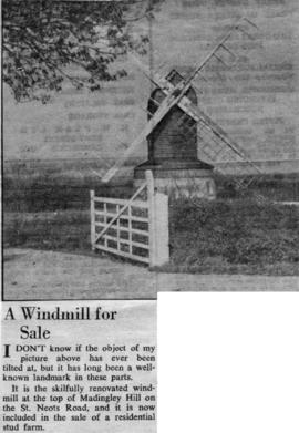 """A windmill for sale"""