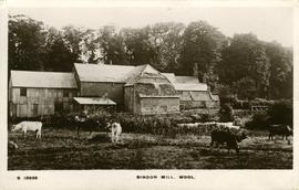 Bindon Mill, Wool
