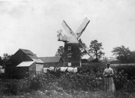 Tower mill, Waddesdon, in working order