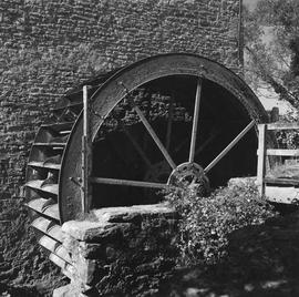 Mill wheel, West Mill, Sherborne
