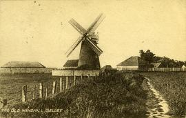 Medmerry Mill, Selsey