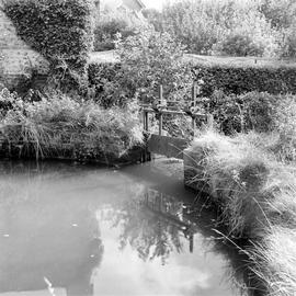 Detail of sluice and mill pond, Barcombe Farm, Alton Pancras
