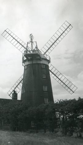 Savory's Mill, Burnham Overy, surrounded by trees